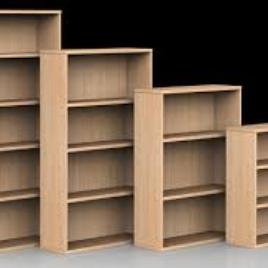 Books Cases 1