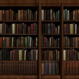 Books Cases